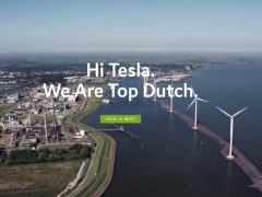 Tesla Top Dutch